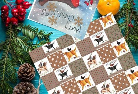 CHRISTMAS CARDS & GIFT WRAP