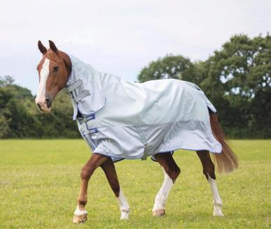 Protect your horses and ponies this summer with our great range of fly rugs and masks.