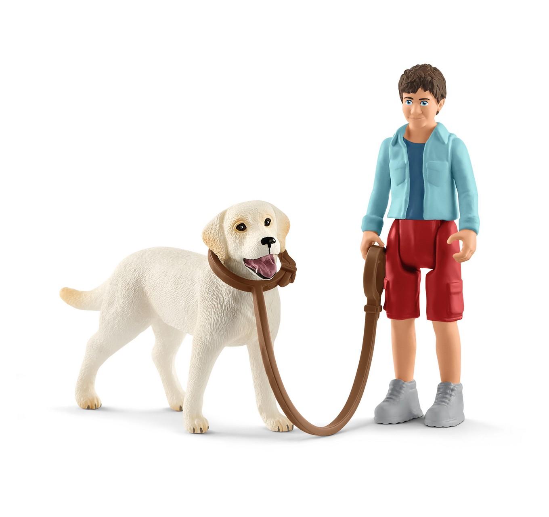 Walking with Labrador Set