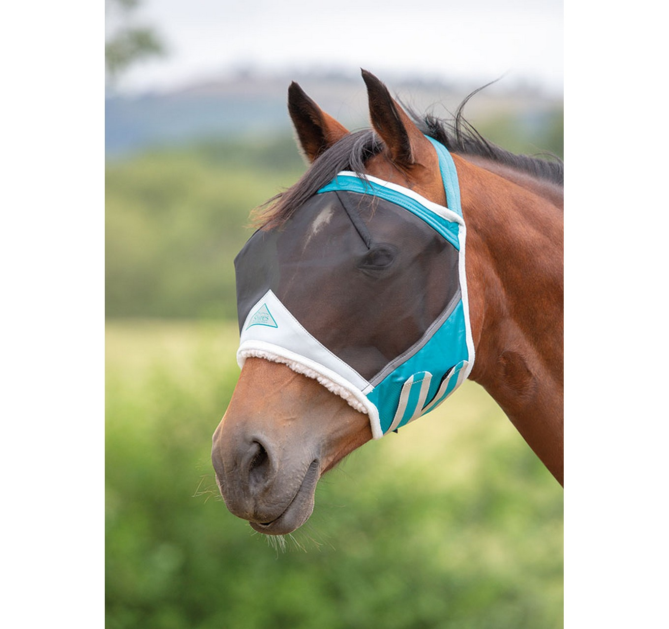 Earless Fly Mask Teal Cob