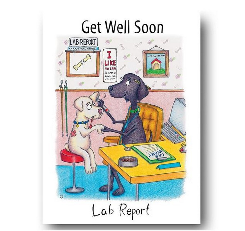 Lab Report - Card