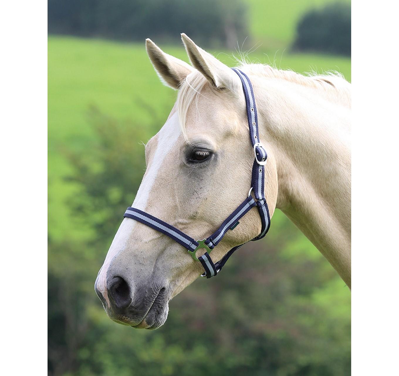 Headcollar Navy/Silver Pony