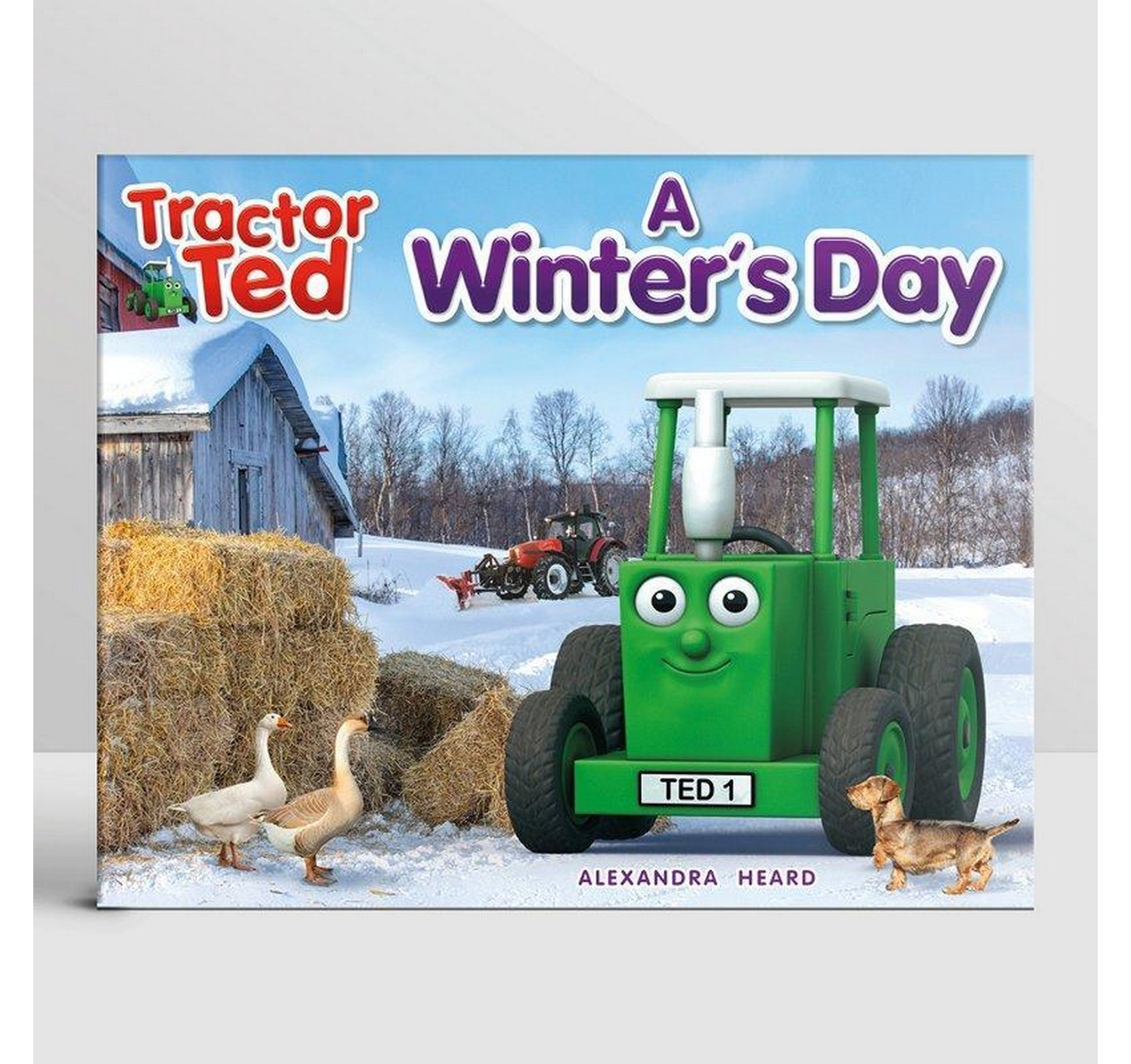 A Winter's Day Book