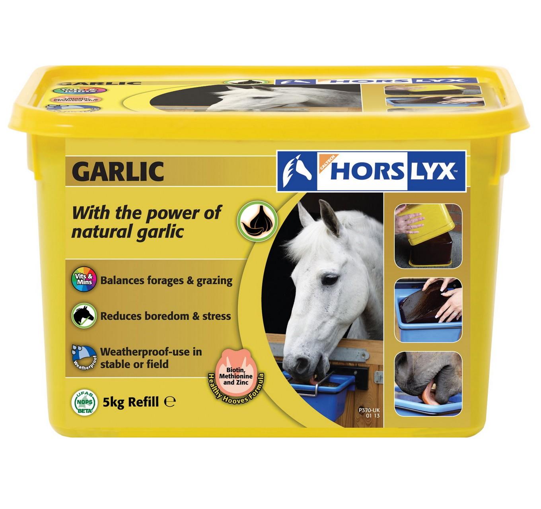 Horslyx Garlic Lick 5kg