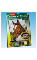 Horse Paint By Numbers
