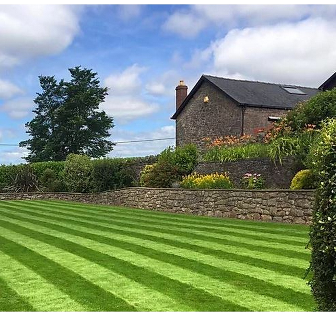 Lawn Seed  Without Rye 5kg
