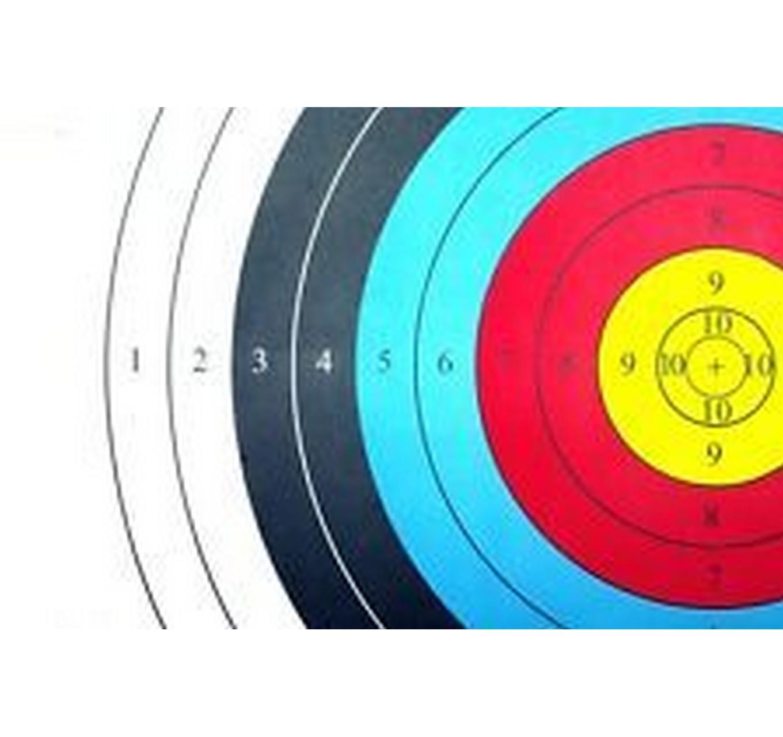 Archery Square Target 40cm
