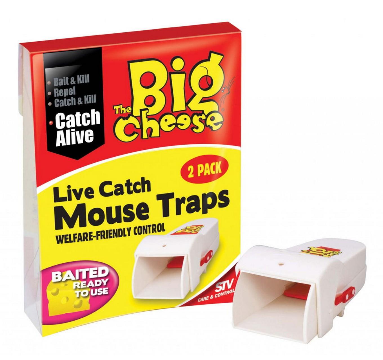 Live Catch Mouse Trap 2pk