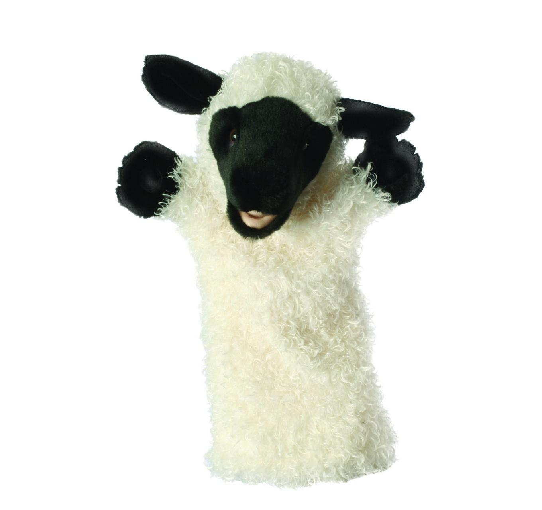 Long-Sleeve White Sheep