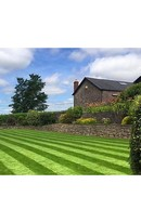 Grass Seed Lawn W/out Rye 5kg