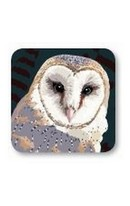 Coaster Barn Owl