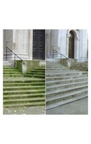 Patio Magic 2.5L