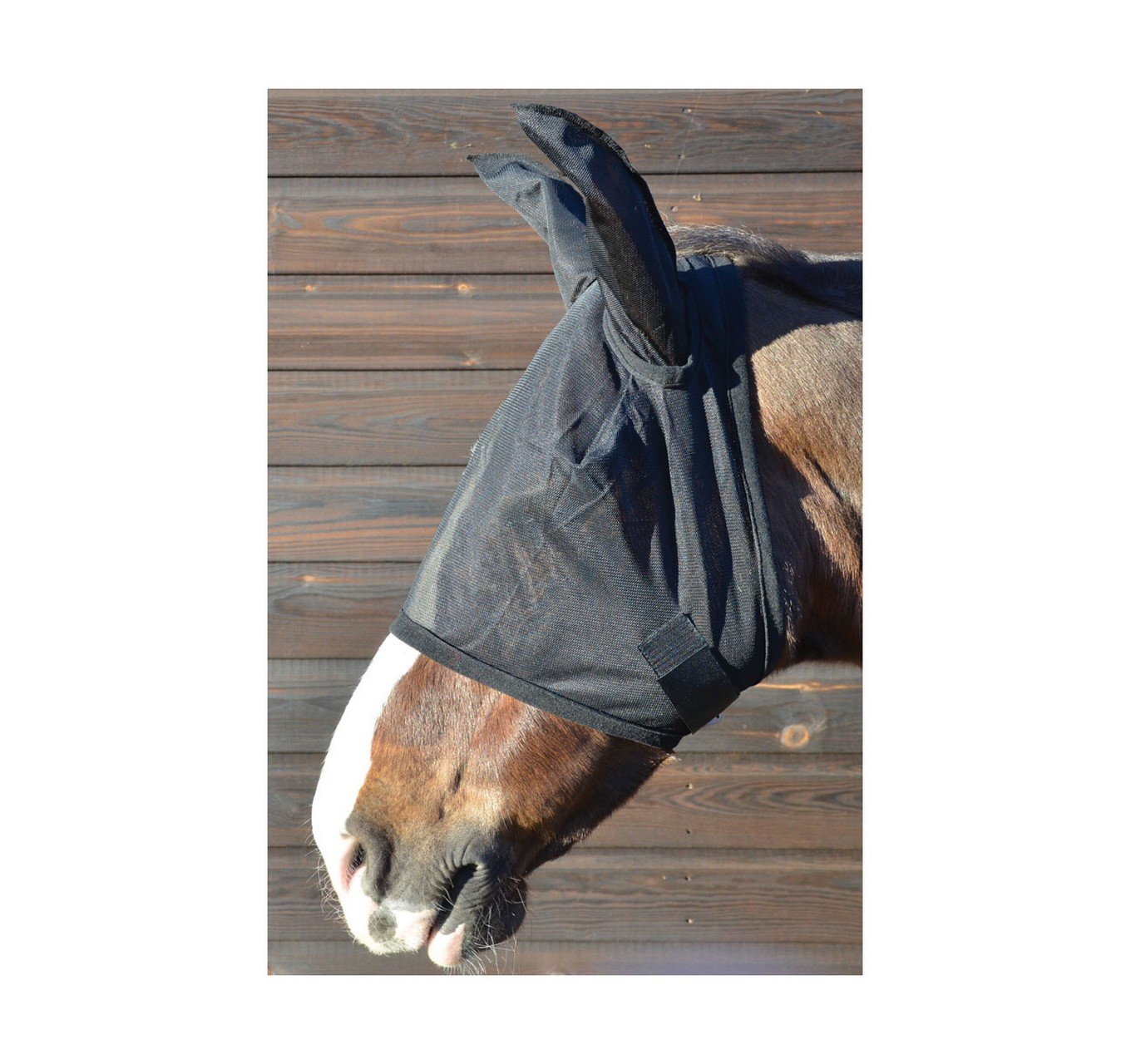 Fly Mask with Ears Black L