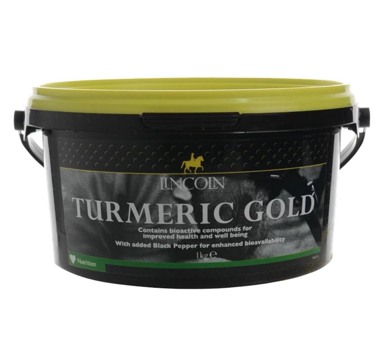 Turmeric Gold 1kg Lincoln