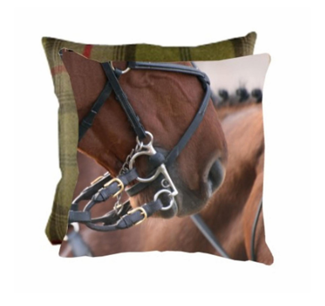 From The Horses Mouth Cushion
