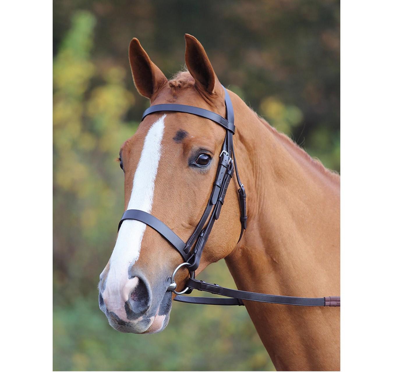 Plain Bridle Havana Pony