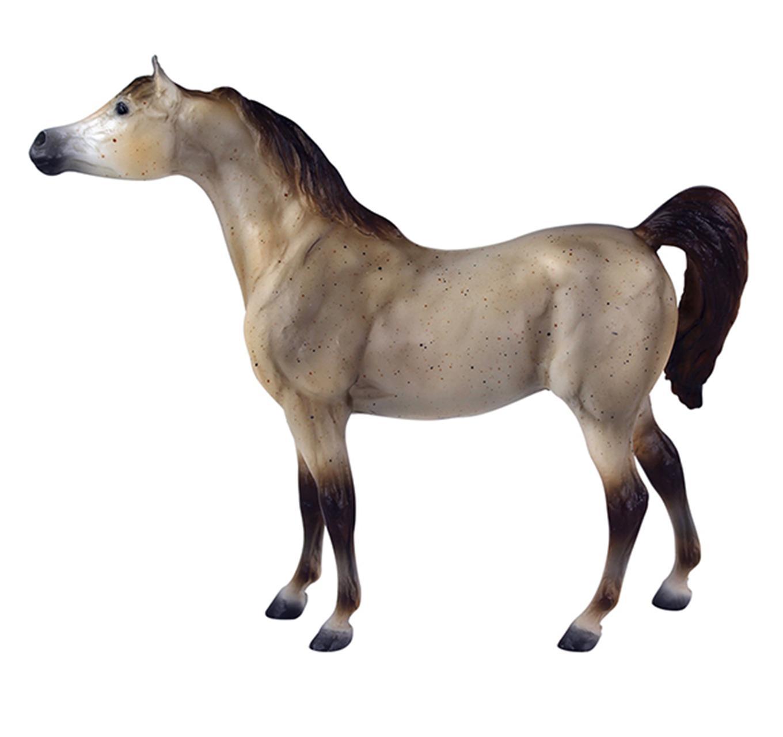 Grey Arabian