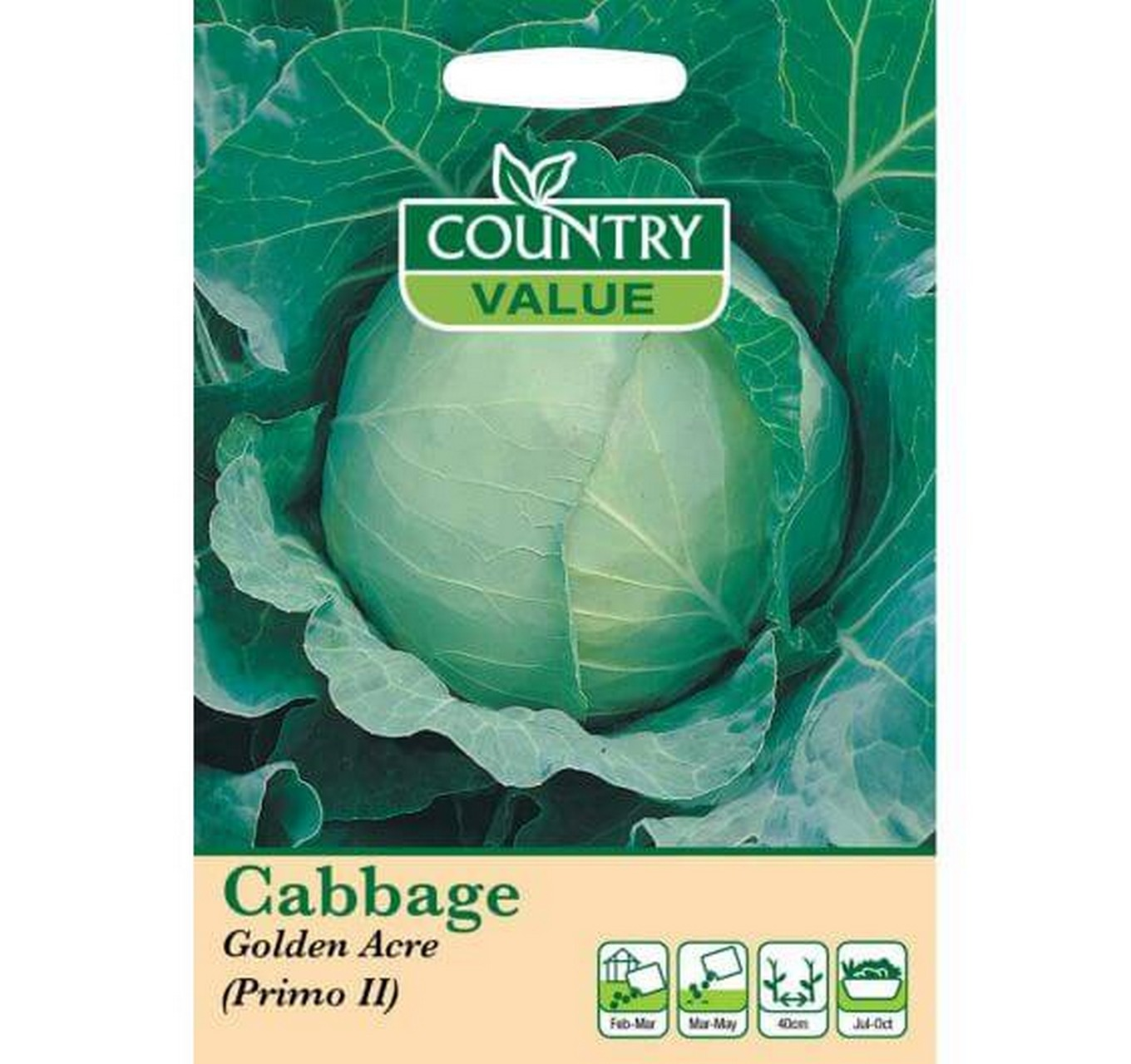 Cabbage Golden Acre (Pimo II)