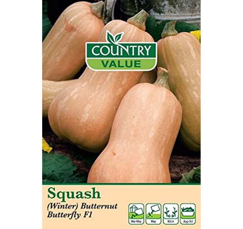 Squash (Winter) Butternut