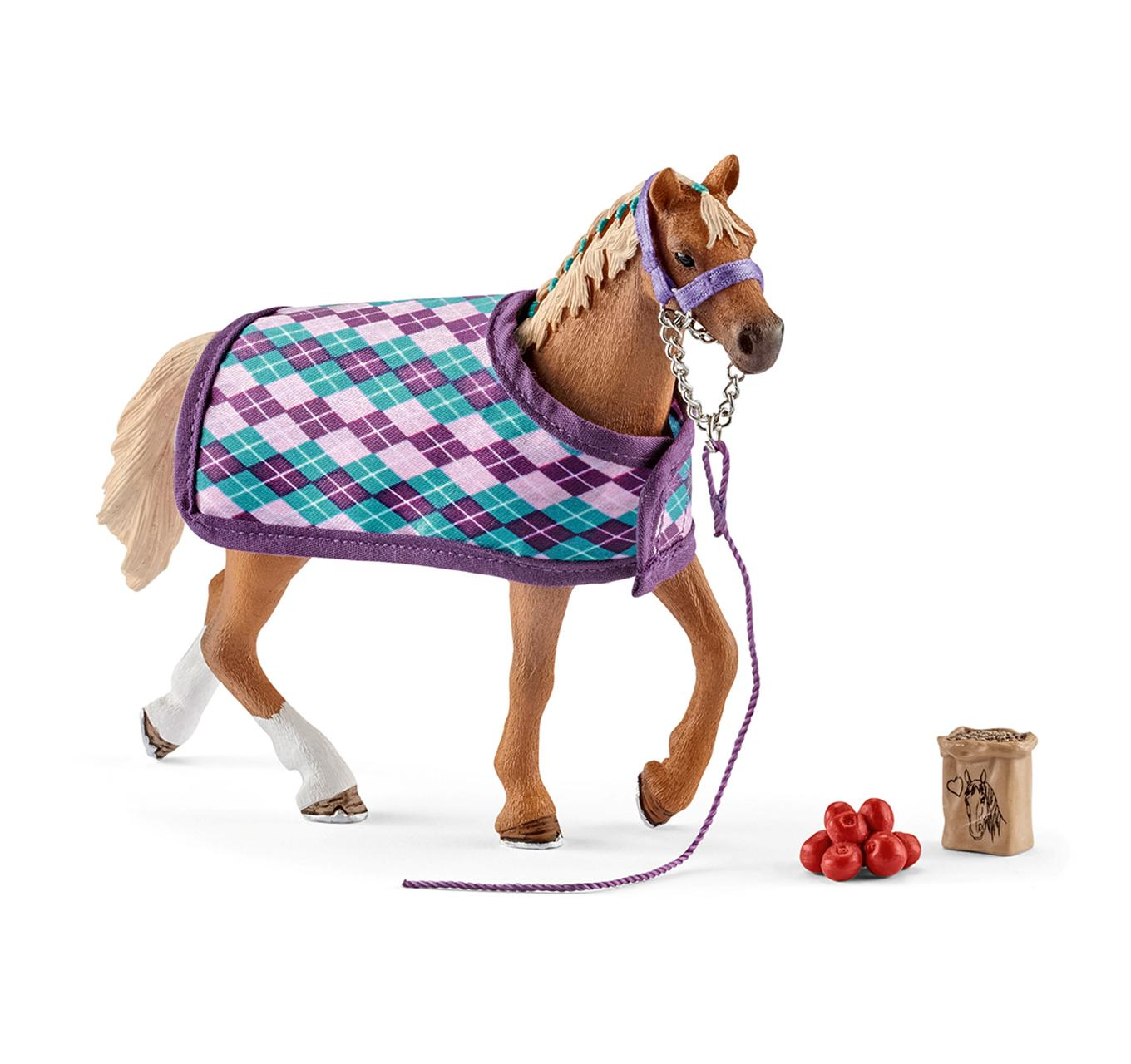 English Thoroughbred & Blanket