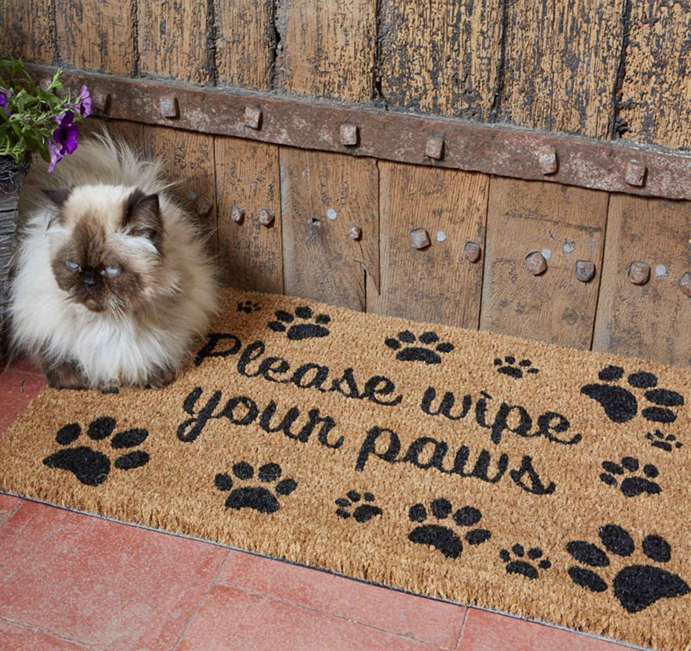 Wipe Your Paws Mat 75x45cm