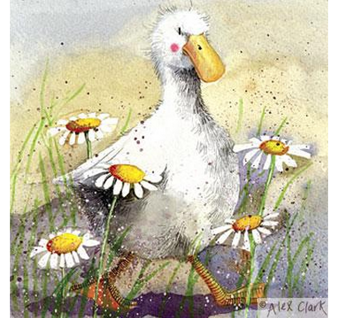 Duck In The Daisies Blank Card