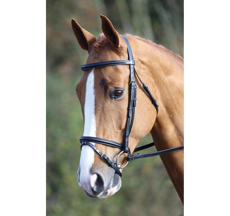 Raised Flash Bridle Black Pony