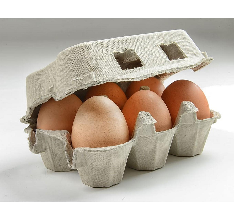 Large Free Range Eggs - 6 Pack