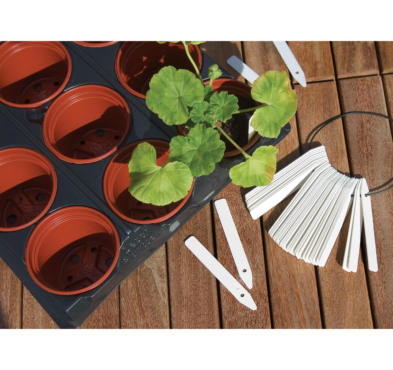 Economy Plant Labels 15cm x100