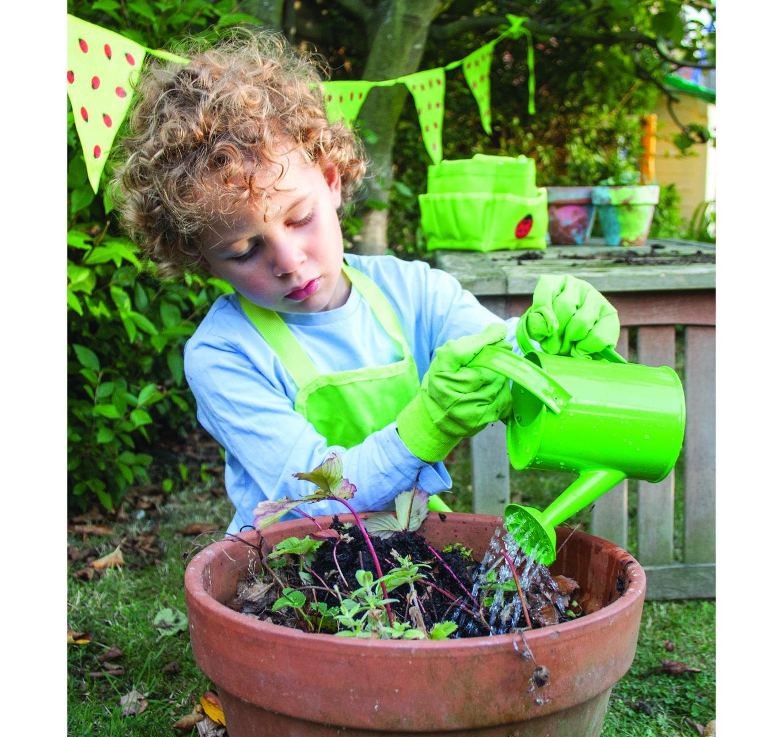 Cotton Gardening Gloves