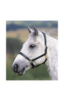 Ragley Headcollar Black Full