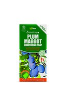Plum Maggot Trap Set