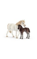Pony Mare & Foal