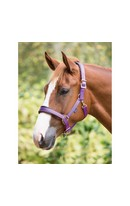 Delux Headcollar Purple Pony